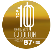 top100 awards 2020 evooleum-87
